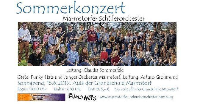Sommerkonzert des Marmstorfer Schülerorchesters